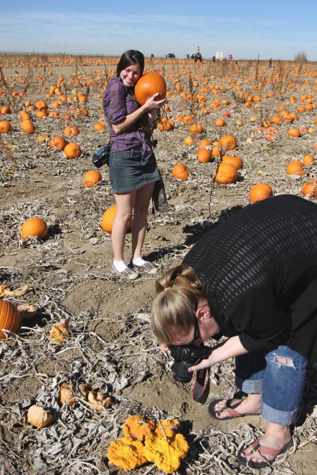 Three photographer's go to a pumpkin patch....